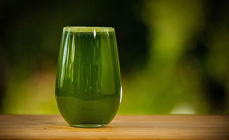 booster smoothie gesundes grün