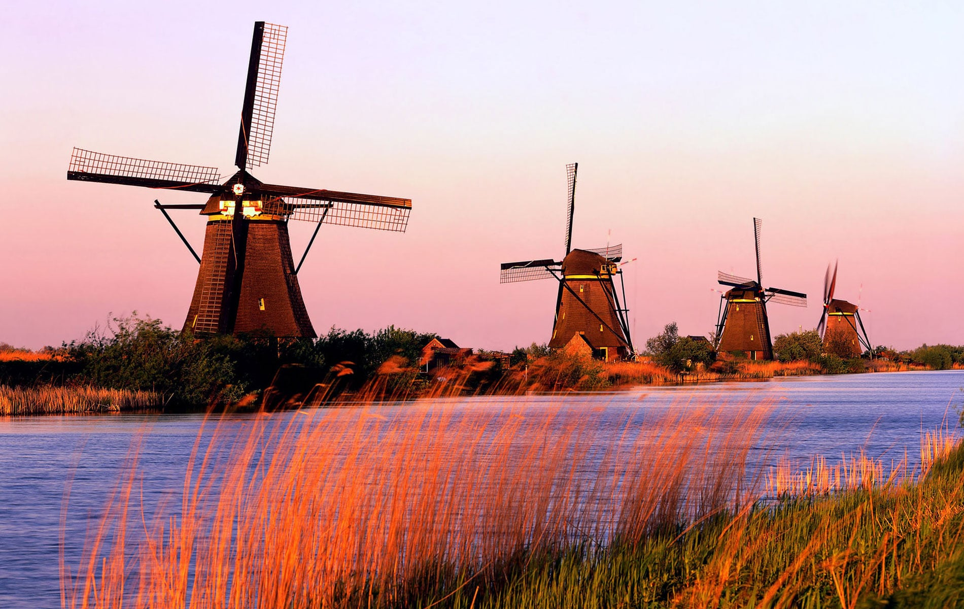 niederlande kinderdijke planktonholland